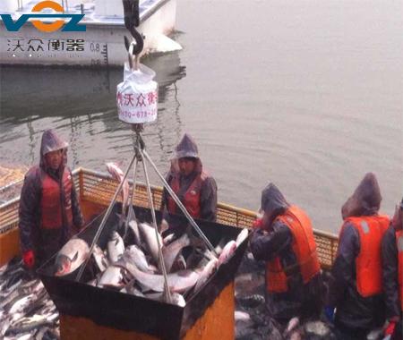 水库海洋渔业生产专用防水型电子bob体育官方平台